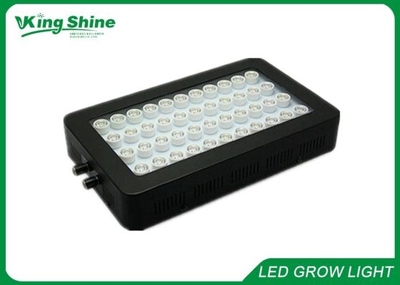 ไฟ LED Aquarium
